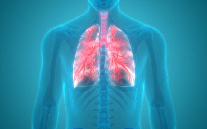 Vaping on Human Lungs